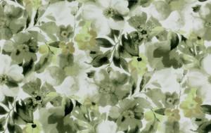 Spring02(75.48.2)