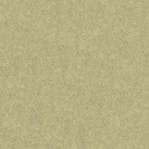 PantheraImpression138(27.27.3)