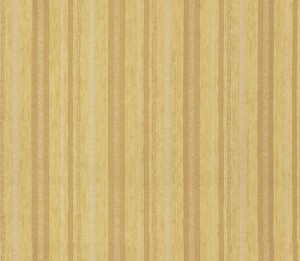Yava30Stripe(10.10.1)