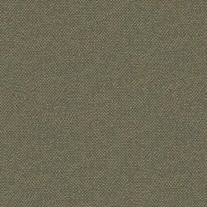 RisheliePLN30Y8(20.20.2)