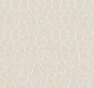 Kayman125(10.10.5)