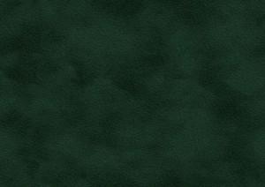 OregonAntik41(25.25.6)