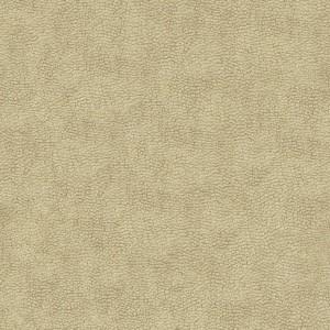PatinaPLN143(10.10.6)