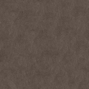 PatinaPLN620(10.10.6)